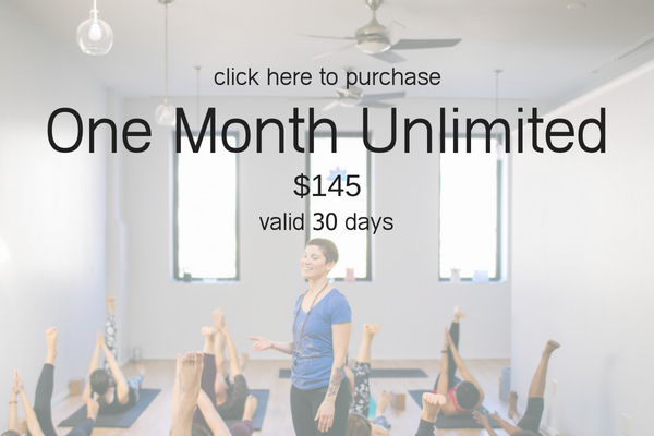 Pricing - one month unlimited.png