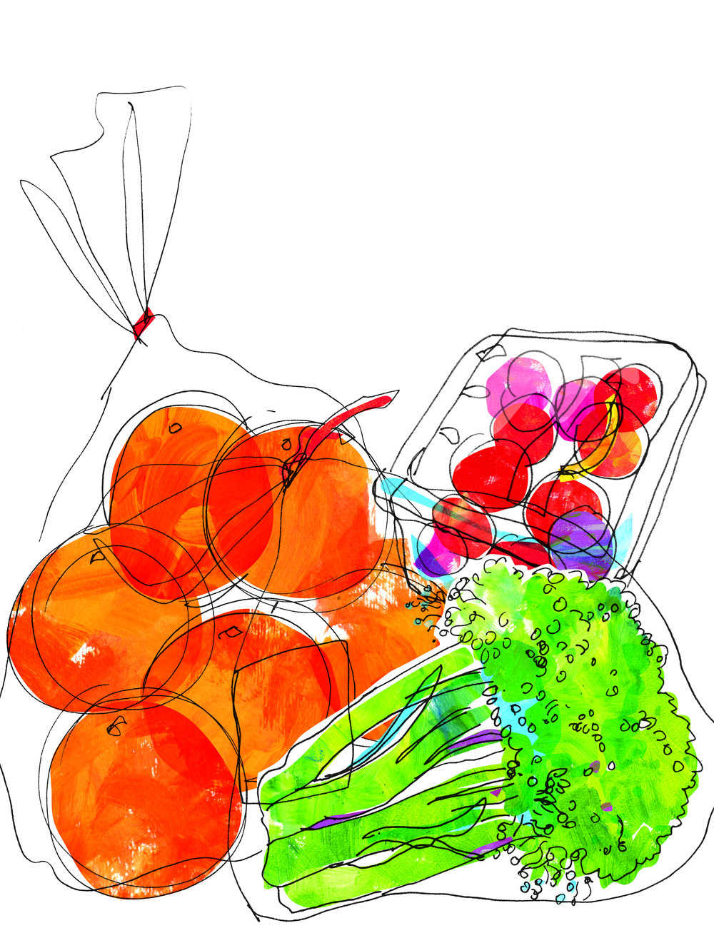 wegmans groceries_flat.jpg