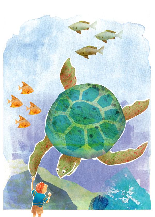Turtle_web.jpg