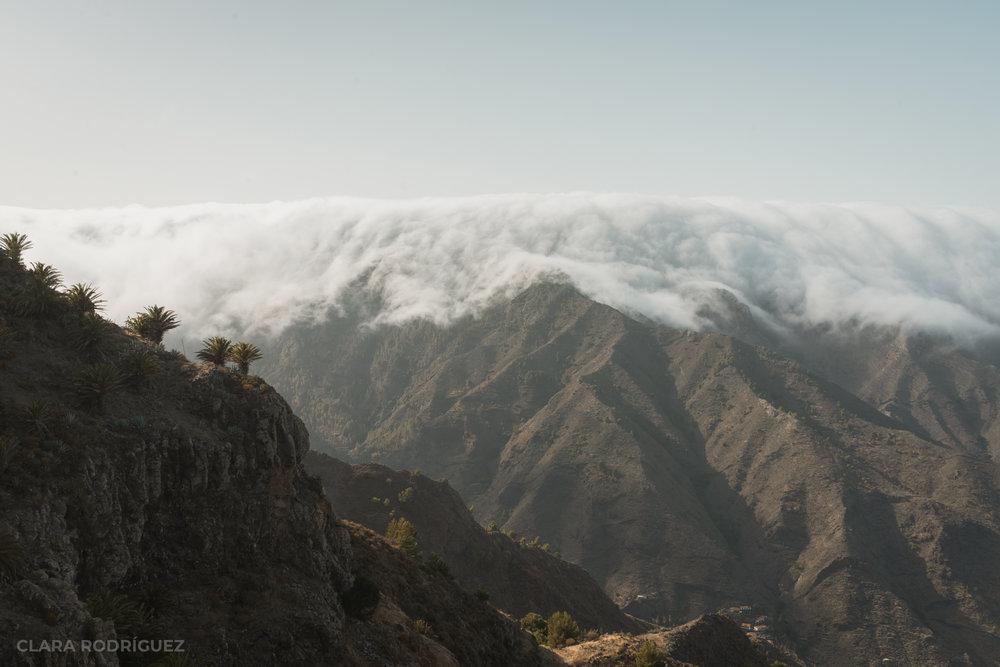 El Alto del Garajonay cubierto por la niebla que le caracteriza