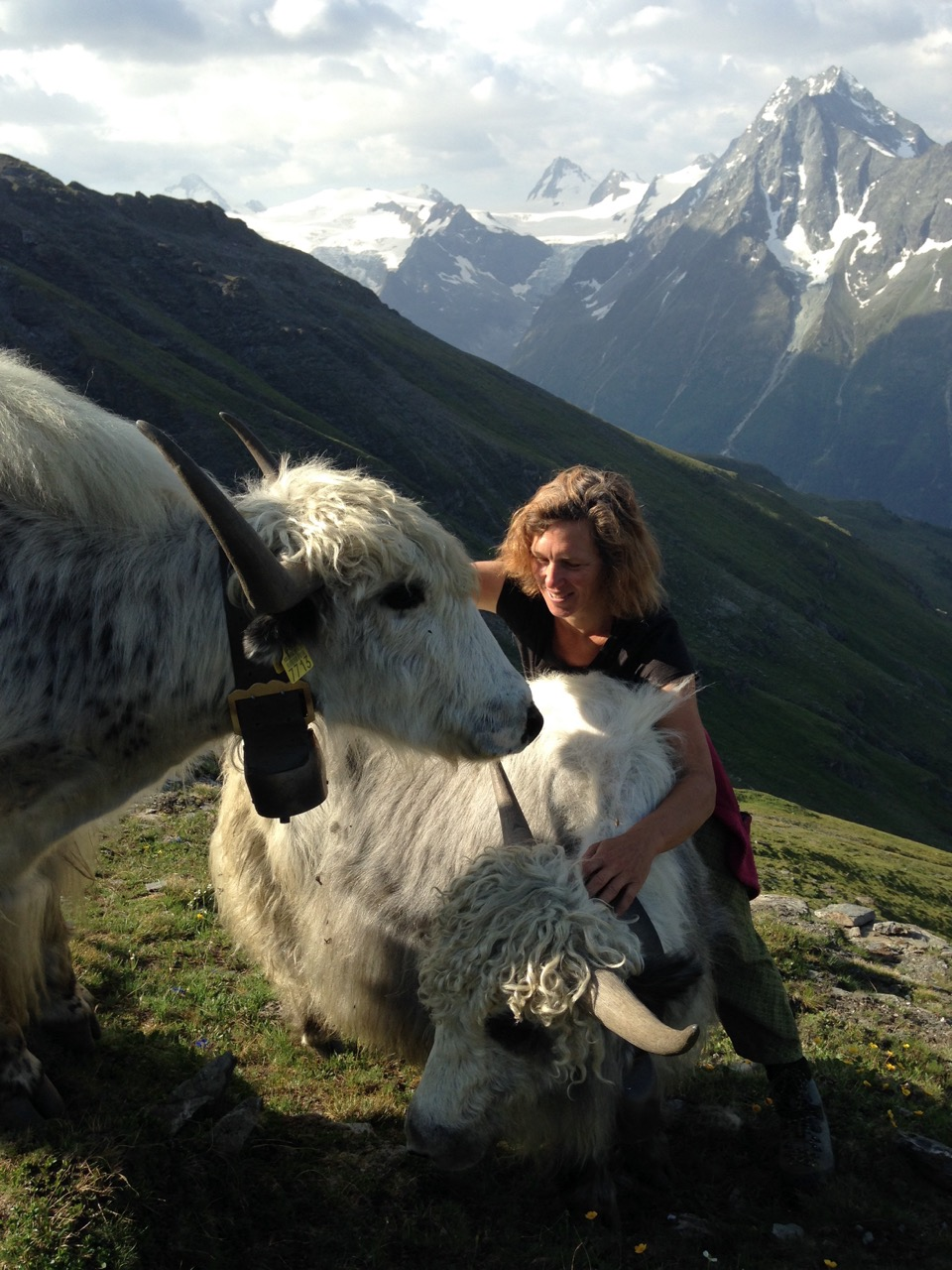 103-Switzerland-2-Rosula-with-her-yaks-Switzerland-July-2015-copy.jpg