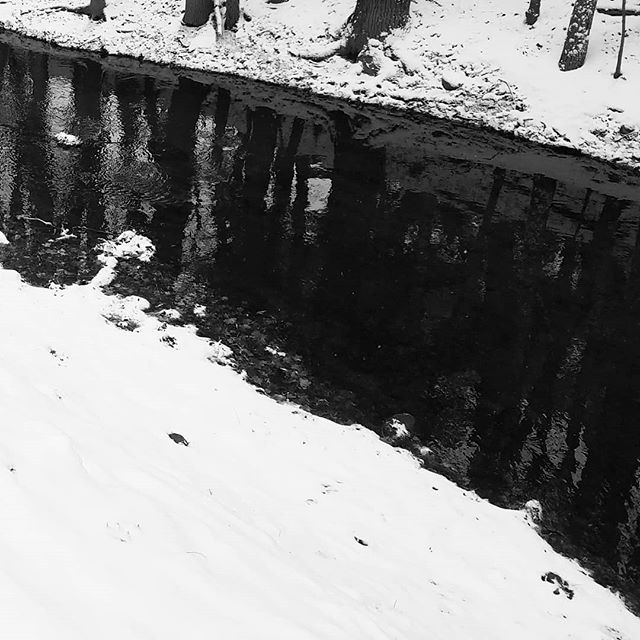The waters are cooling off. #riverfishing #winterwonderland #snowy #redcedar #riverphotography