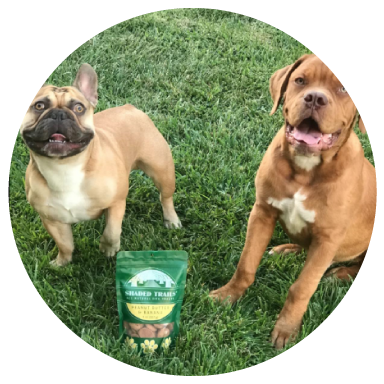 "Bobbi T., Highland, CA - ""My pups loved them. I have not given my pups dog treats in over three years because you don't know what's in them. These are great with real ingredients and safe."""