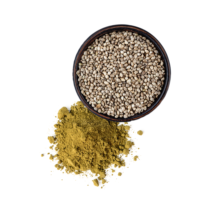 Hemp Seed - + Packed with all 20 amino acids!+ Helps maintain a healthy heart+ Reduces allergies+ Prevents Cancer+ Reduces inflamation