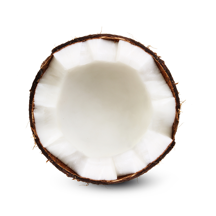 Coconut Oil - + Helps make coats sleek and glossy while ridding of doggy odor+ Increases energy and helps reduce weight+ Promotes good nerve and brain function and prevents dementia