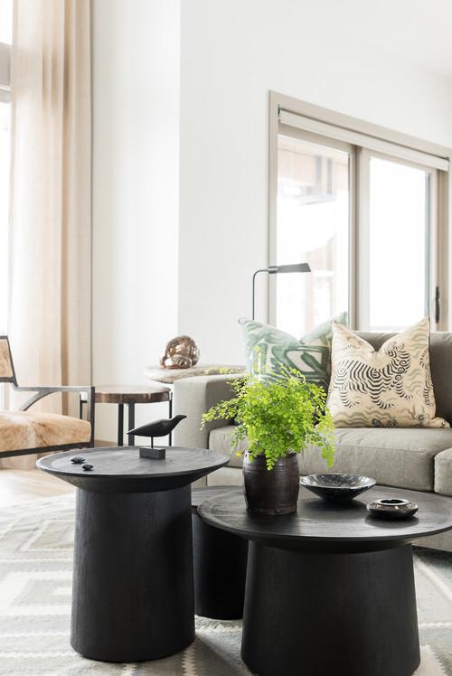 contemporary-living-room (2).jpg