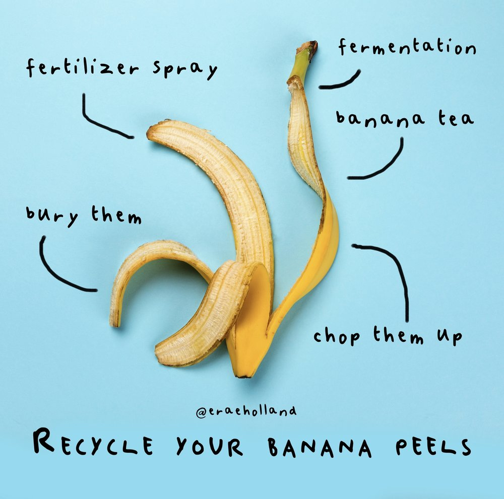 Top view of yellow banana peel isolated on blue, colorful background