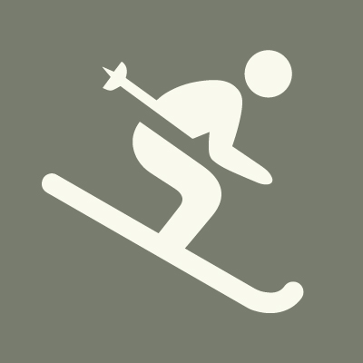 Cross country or downhill ski? - DOWNHILL