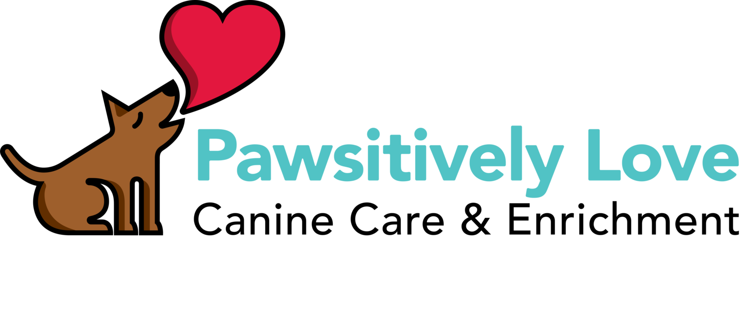 Pawsitively Love, Canine Care and Enrichment