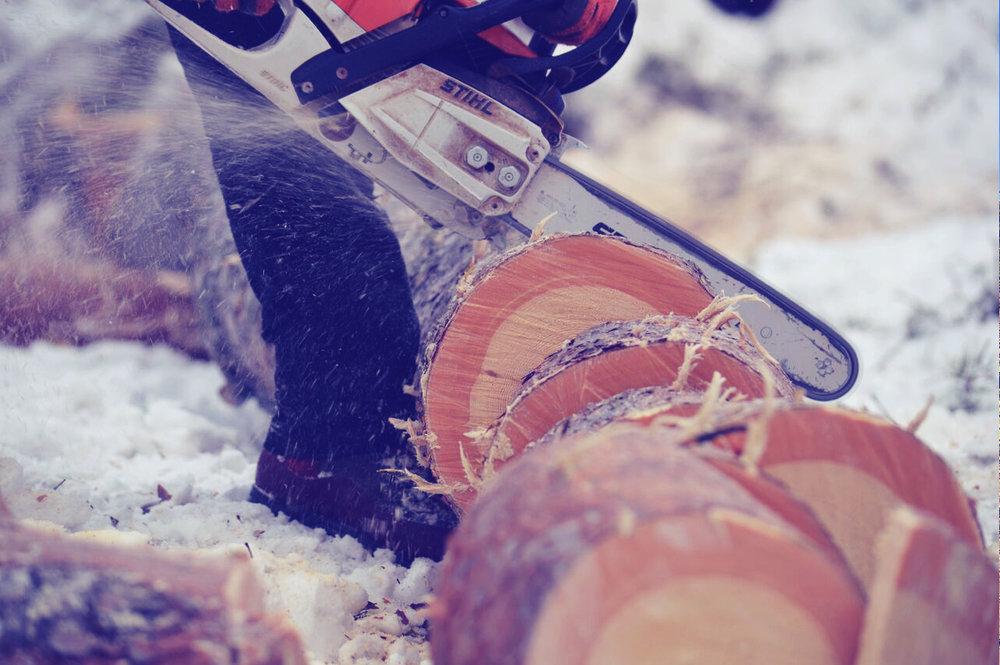 Vedkapning - En tilläggstjänst i samband med trädfällning och beskärning. Stam och grövre grenar sågas ned till lagom längder för era vedbehov eller valfri användning. Standardlängd är ca 25- 30 cm.