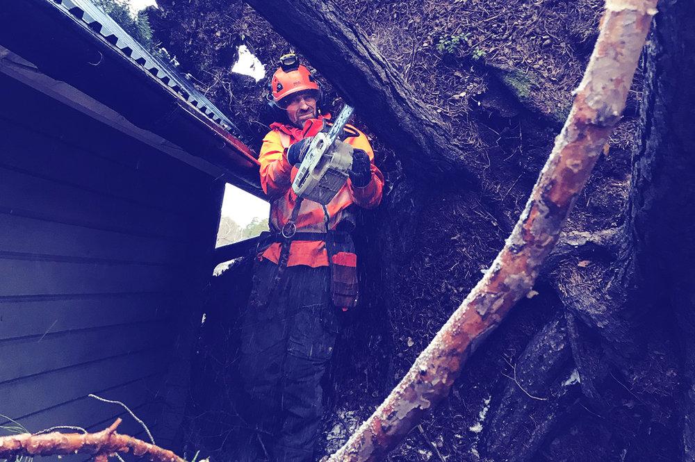 Jour - Vi erbjuder jourtjänst. Om träd eller grenar riskerar att falla eller har fallit över t.ex hus bilar, ledningar eller lekplatser så kan vi komma ut och hjälpa er. Vi har jour främst inom Stockholmsregionen, med utgångspunkt från Lidingö.
