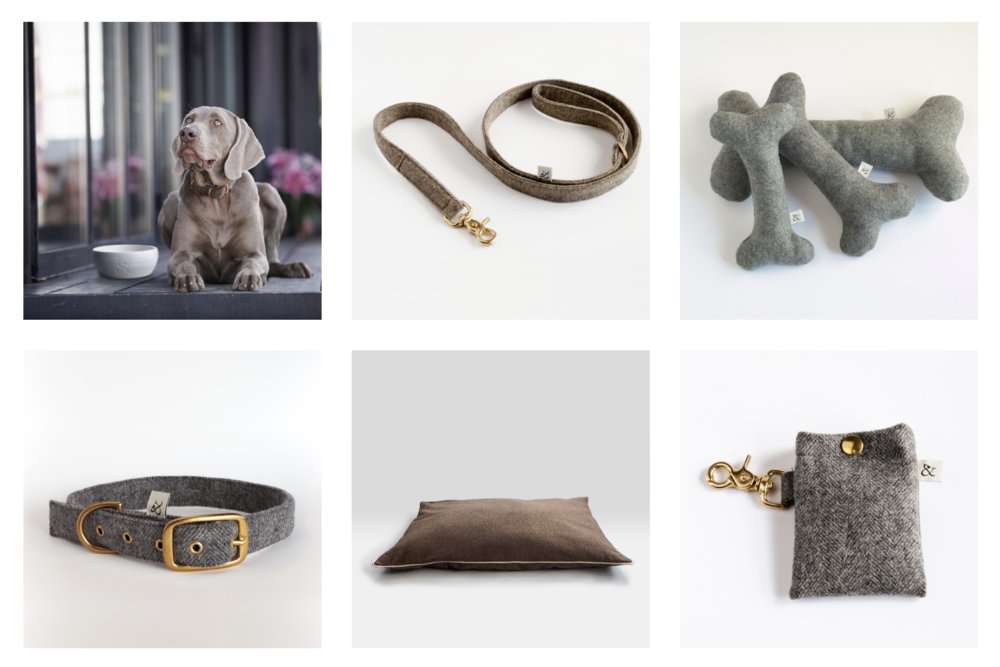 collagewool&dogs.png