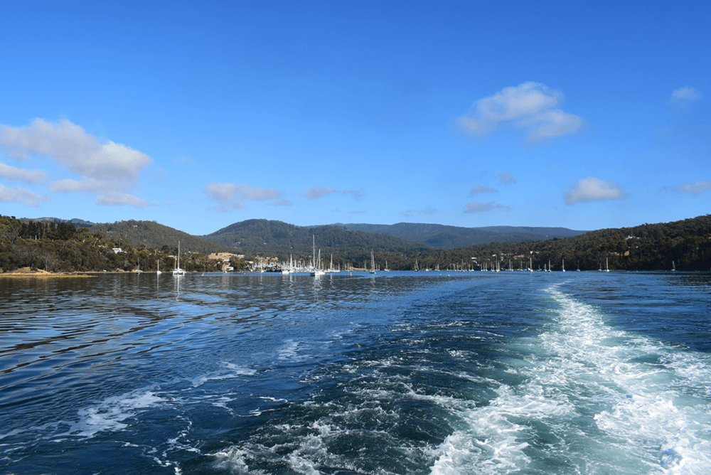 On the way to Bruny Island.