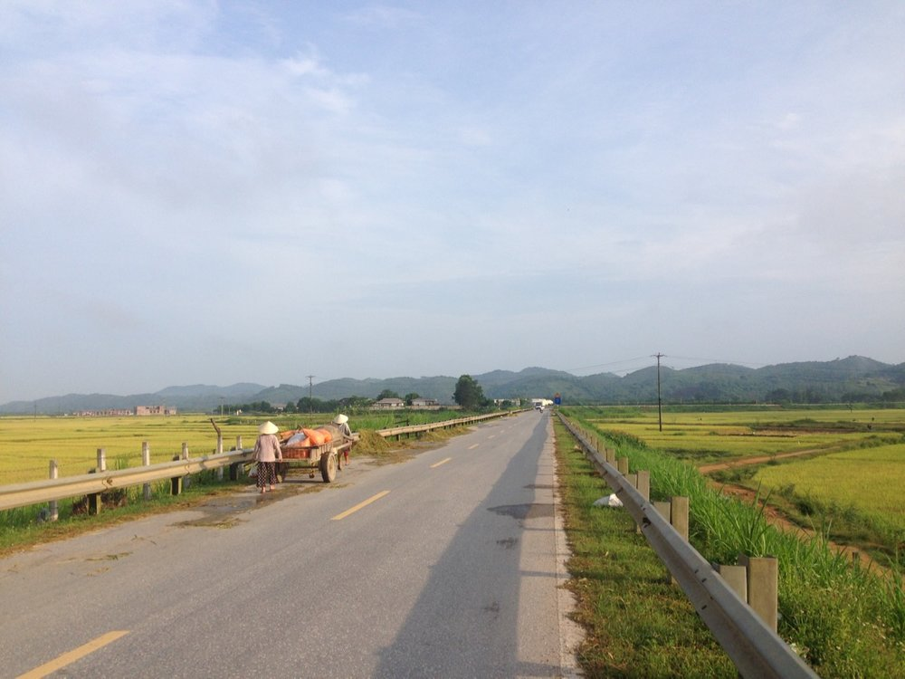 Beautiful country side with rice fields.