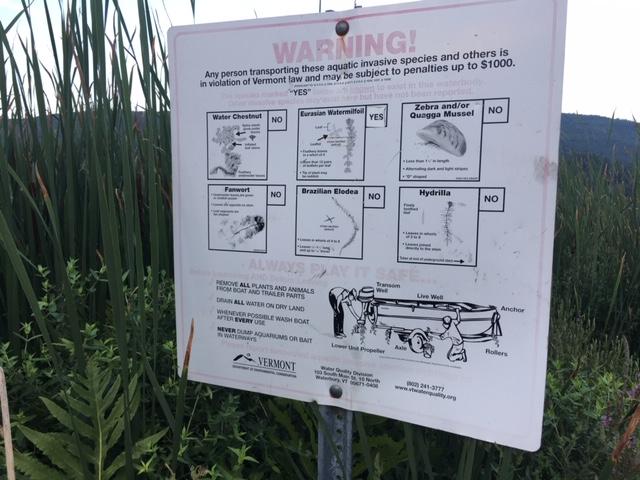 Invasives awareness, Brattleboro Vt