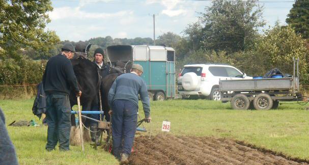 ploughing5