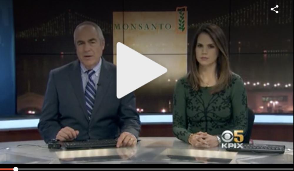 CBS Local San Francisco | November 2018