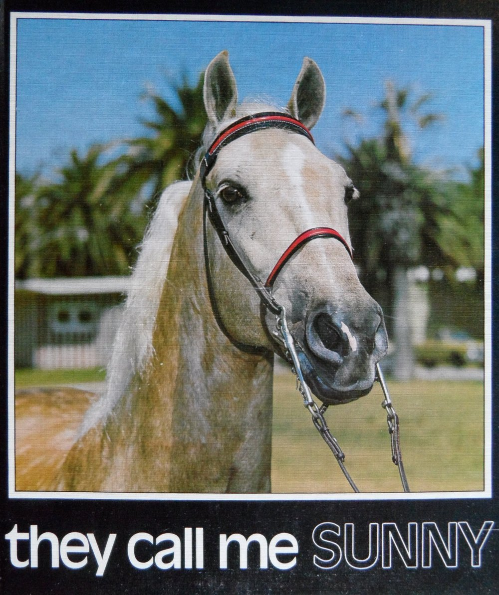 0 - they call me SUNNY.JPG