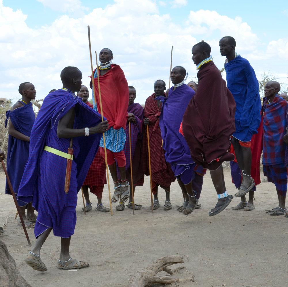 Maasai Dancing (AF025)