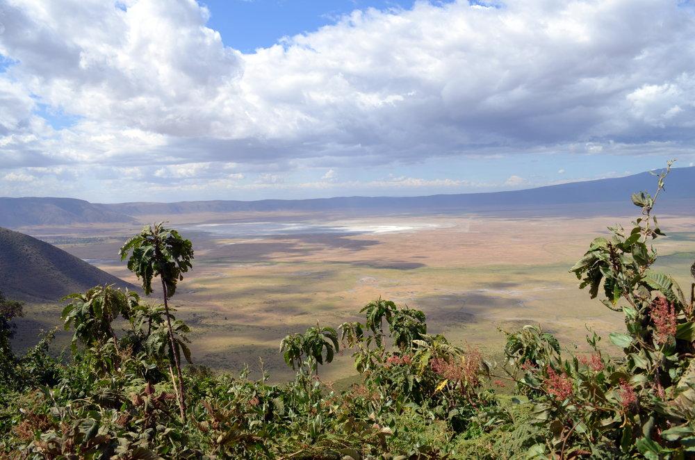 Ngorongoro Crater (AF028)