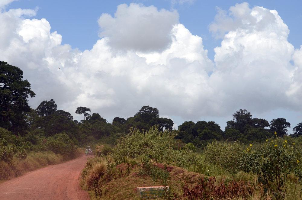 Rim of Ngorongoro Crater (AF030)