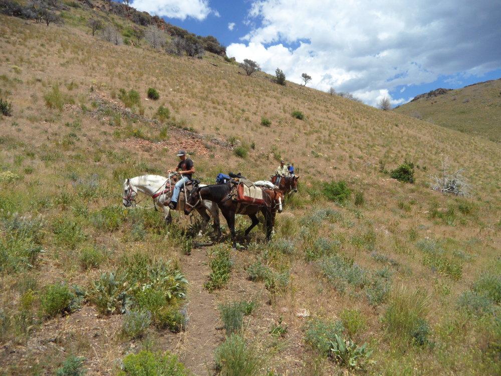 Guests on Rancho del Cielo Azul.JPG