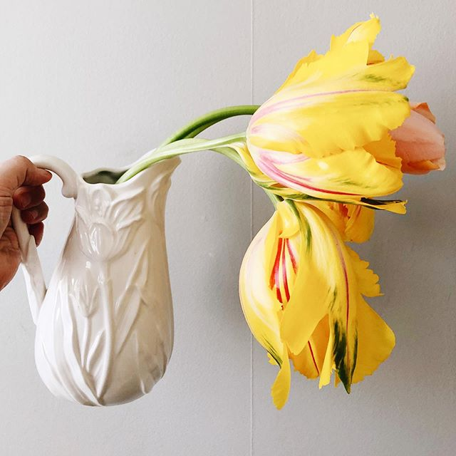 💛 🌿 • • • #interflora  #theflowereffect #fioribilden #sannegårdensblomsterhall  #göteborgsflorist #tulpaner