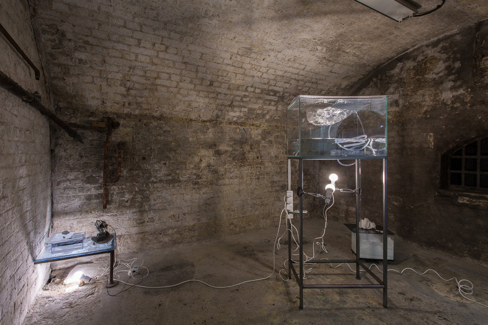 White Crypt Hannah Rowan Installation View Low Res-4.jpg