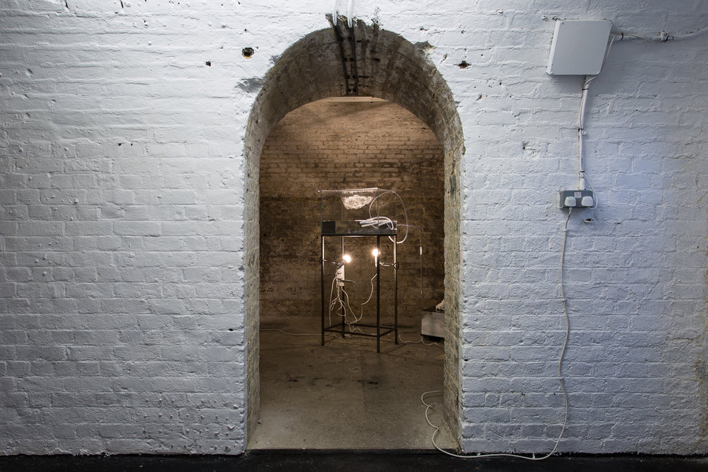 White Crypt Hannah Rowan Installation View Low Res-1.jpg
