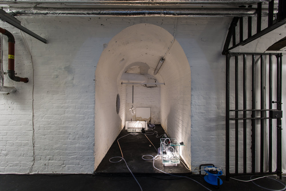 White Crypt Hannah Rowan Installation View Low Res-20.jpg