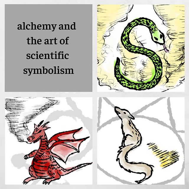 Though widely regarded as a pseudoscientific artifact of history, alchemy has played a vital role in not only artistic expression but also early evidence of art as a form of science communications. Alchemical art featured heavy use of astrological, mythical, and religious symbolism such as the planets or even a few dragons here and there to depict chemical elements and secret recipes! In fact, the chemical processes used to make what alchemists believed to be elemental gold or even the philosopher's stone was often depicted in code through series of illustrations. As a result, many chemical elements were represented allegorically, as shown in the first set of images—can you guess the chemical element these figures represent?  Since then, our scientific knowledge has expanded greatly and moved away from seeking the secret to immortality in favor of medical treatments, industrial applications, sustainable practices, politics, and delaying biological aging—not quite as extreme as immortality, but perhaps a bit more realistic! Though publications on new discoveries may be forward and direct through lengthy papers instead of hiding in the code of an old woodblock carving, by looking at the art-centered communications of alchemy, we can perhaps discover novel ways of communicating research and current scientific focuses through art. • • • • #illresearch #illustratedscience #environment #climatechange #history #zine #sciartist #webcomic #scicomm #scienceillustration #marinebiology #sciart #molecularbiology #cellularbiology #wildlifeconservation #naturalhistory #herpetology #herpetologist #amphibians #climatescience #sealevelrise #scientificillustration #entomology