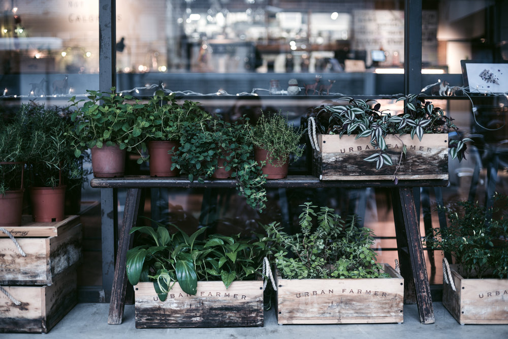 Plants Eatery - 台北市復興南路一段253巷10號1樓+886 2 2784 5677