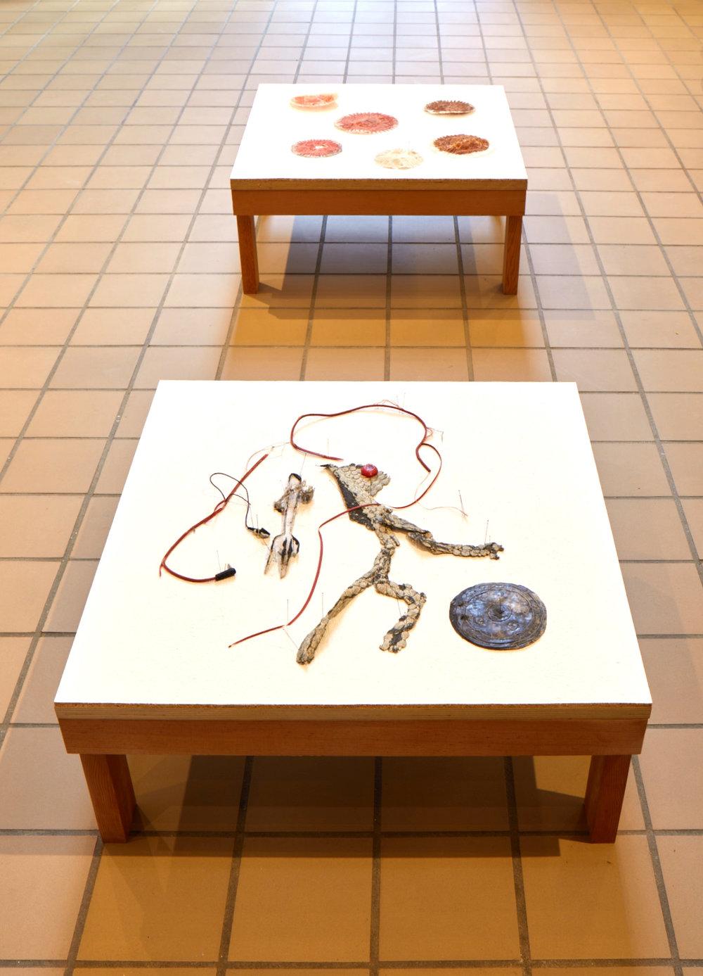 Installation view of  Material History  at JDJ, Garrison, NY, 2019