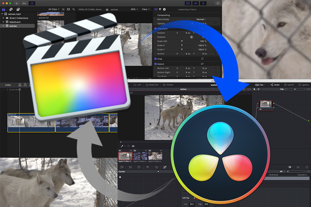 Da Vinci Resolve 15 — Blog - Articles And Posts About Video