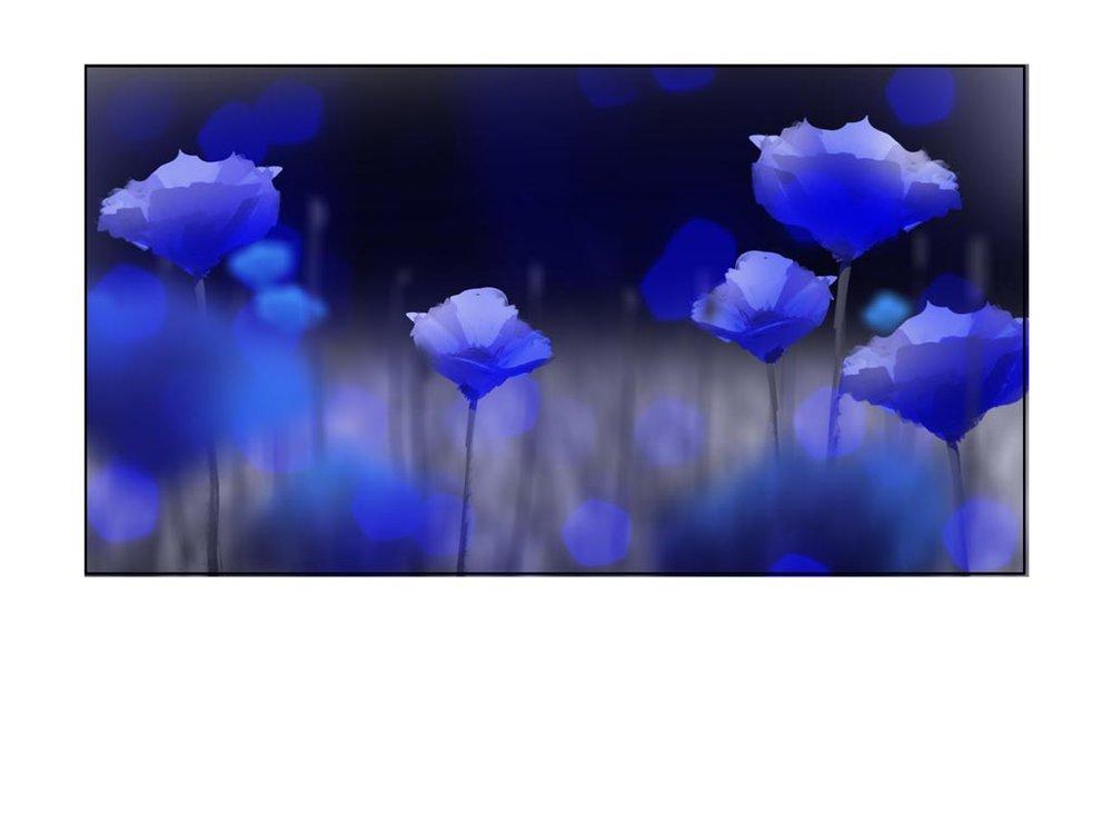 104_082_038.jpg