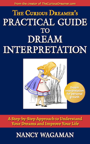 The Curious Dreamer's Practical Guide to Dream Interpretation - Like a personal dream coach, this book walks you step-by-step through interpreting your dream, finding the value in it, and using it to make positive changes in your life. Choose from 40 powerful techniques to customize a robust interpretation experience. From the dream expert at TheCuriousDreamer.com, this guide takes the mystery out of dream interpretation. Book Details