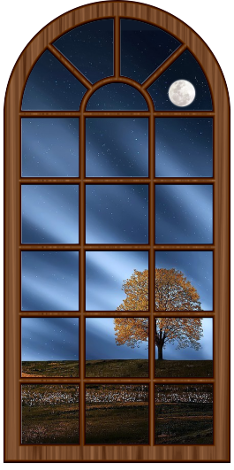 window-other.png