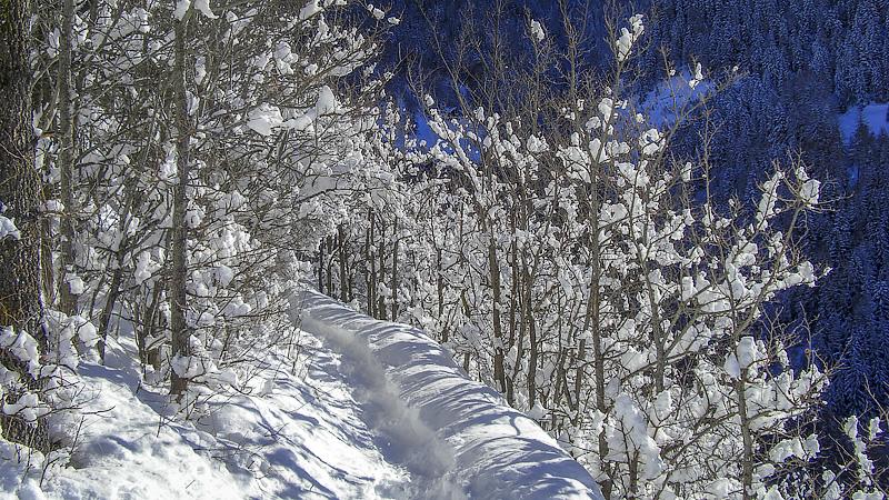 Auf der Bisse im Winter