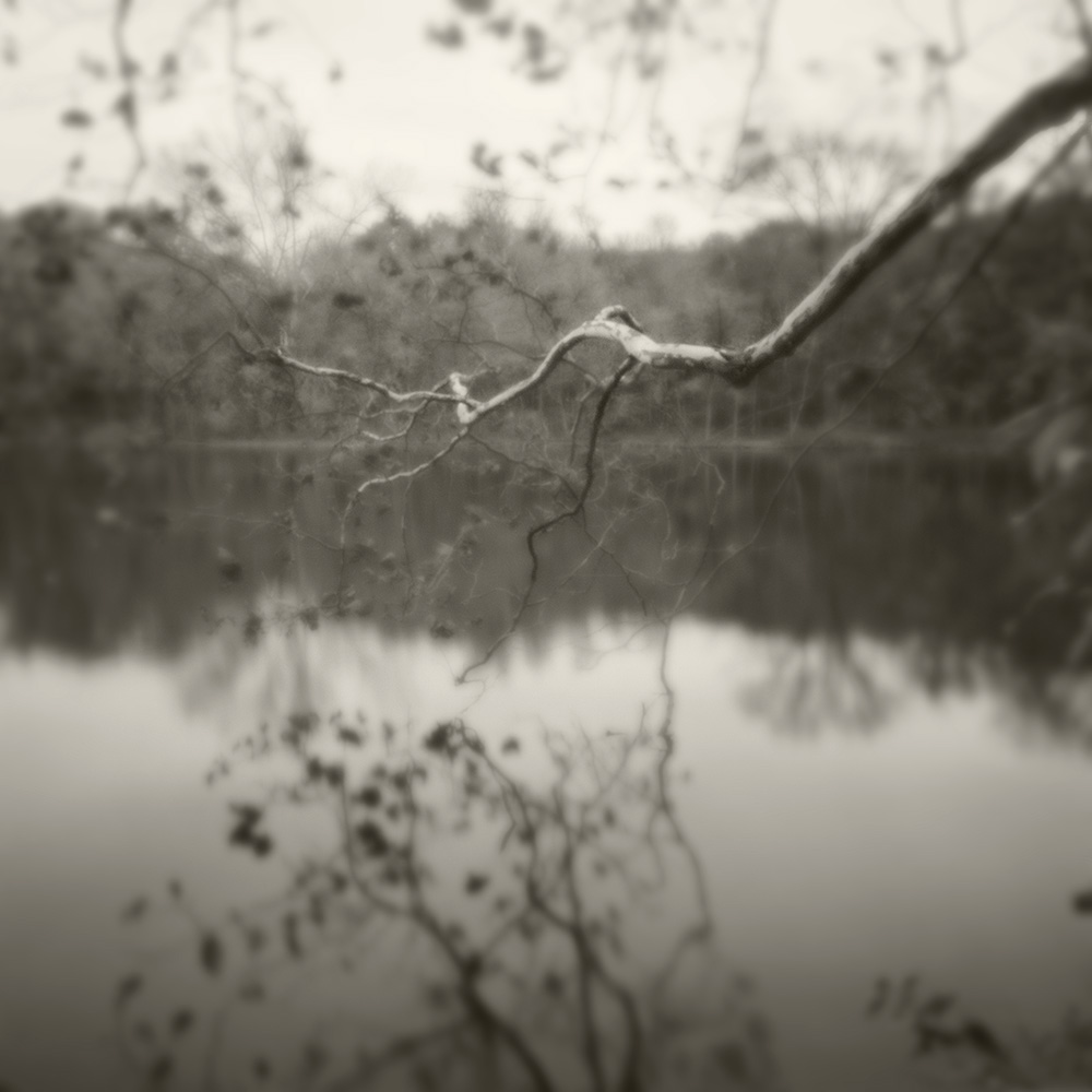 PH limb over lake B&W blur soft light.jpg