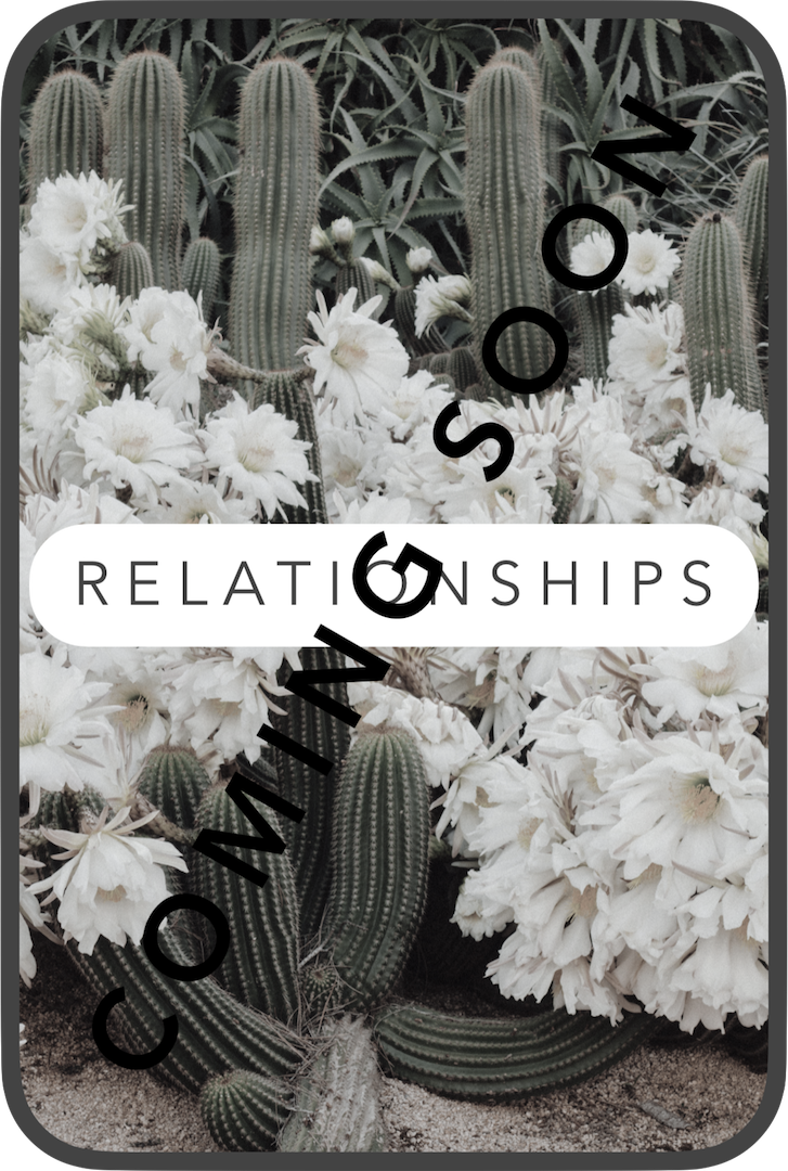 Relationships Grayed Icon.png