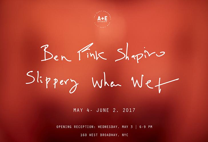 Ben Fink Shapiro Slippery When Wet Exhibition w.jpg