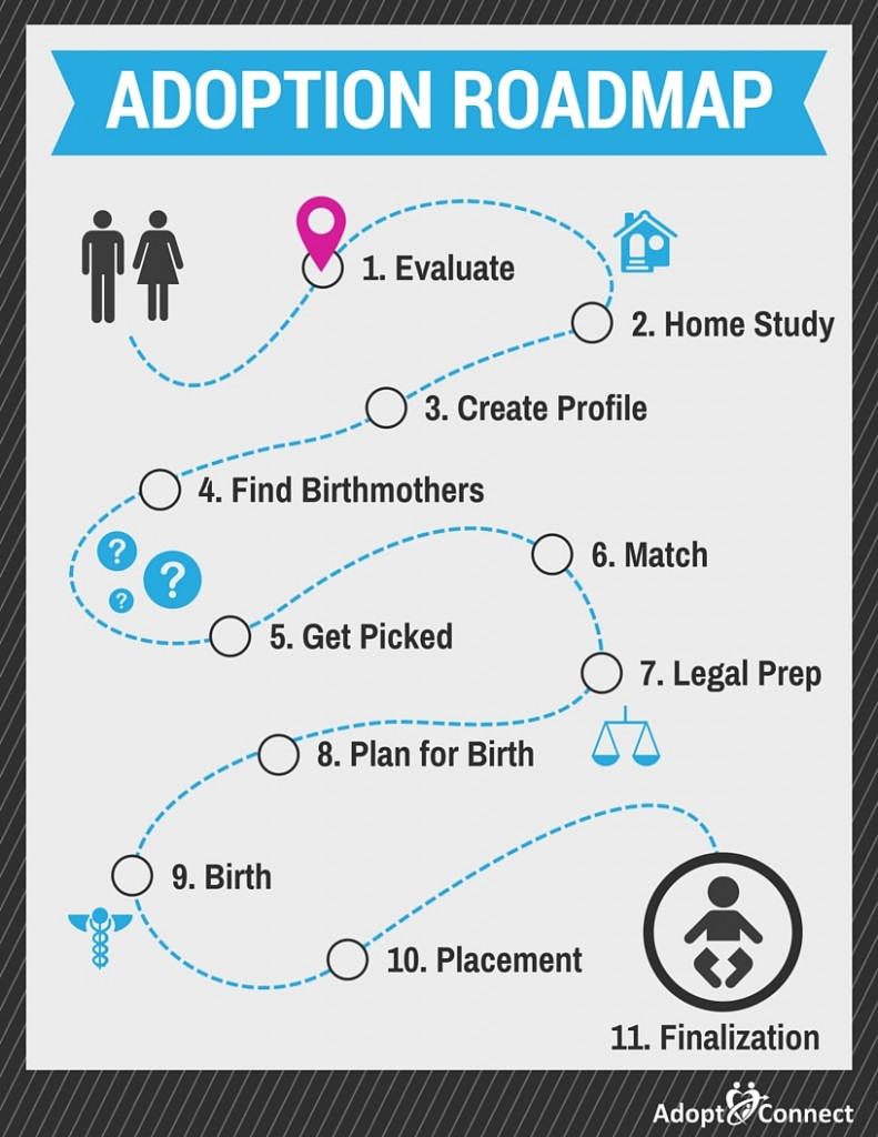 adoption_roadmap_01_evaluate-791x1024.jpg