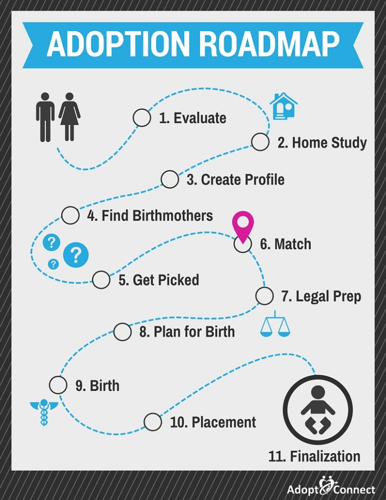 adoption_roadmap_06_match-791x1024.jpg