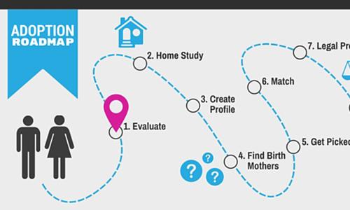 The Adoption Process Roadmap -