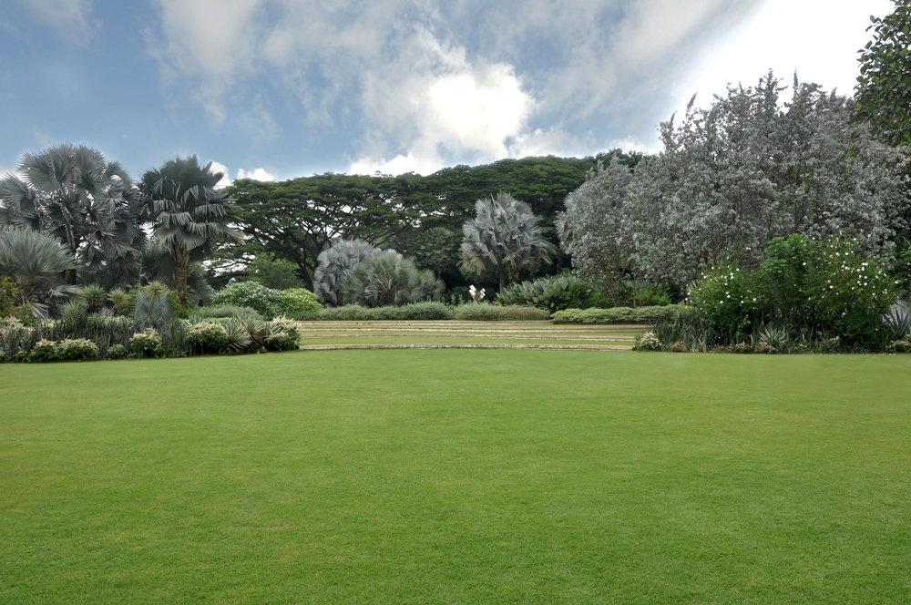 Hort Lawn -