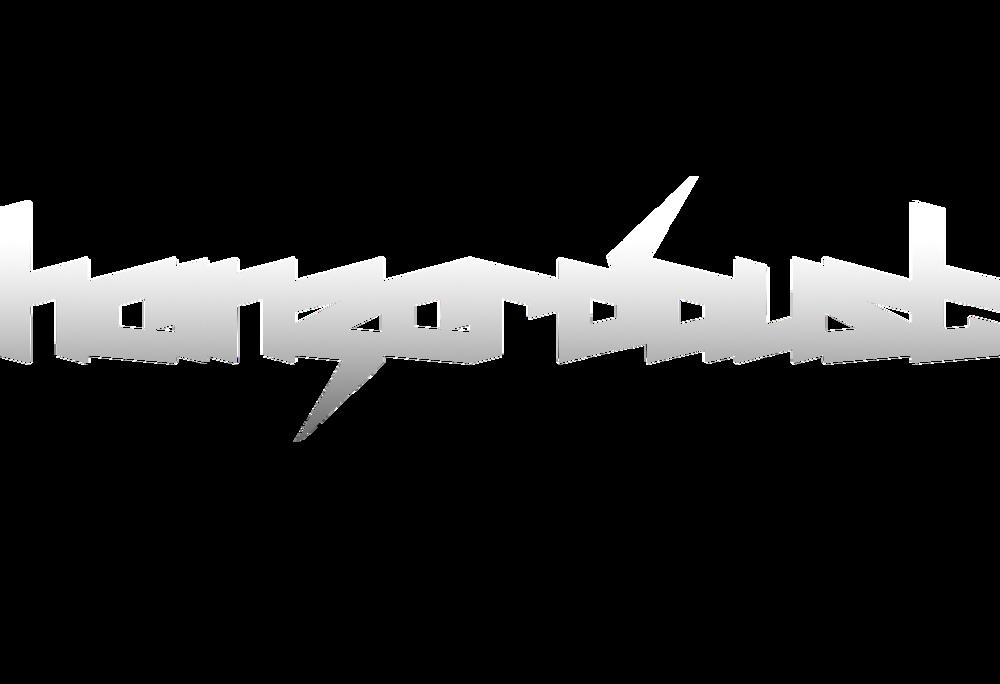 logo-heinzerdaust.png