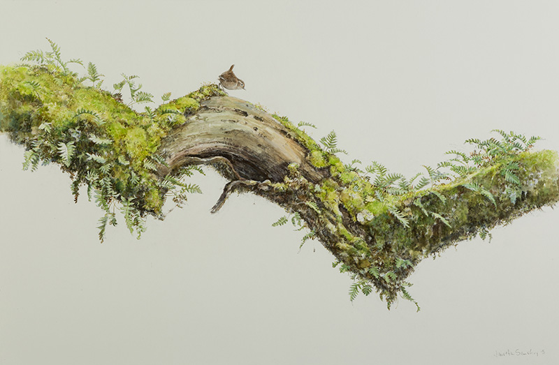 Wren's Larder - Oak Branch with Wren