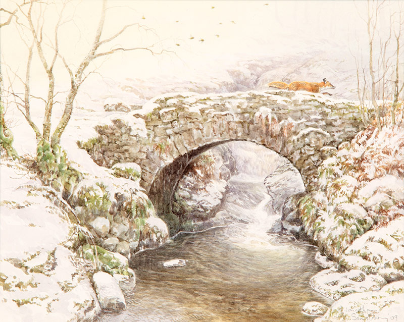 Jonathan Sainsbury, watercolour, Findoglen bridge, fox,