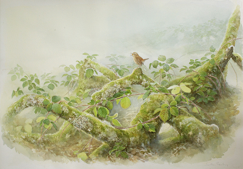 28. Song of the Woods  Watercolour  30 x 42 inches  £3500 .jpg