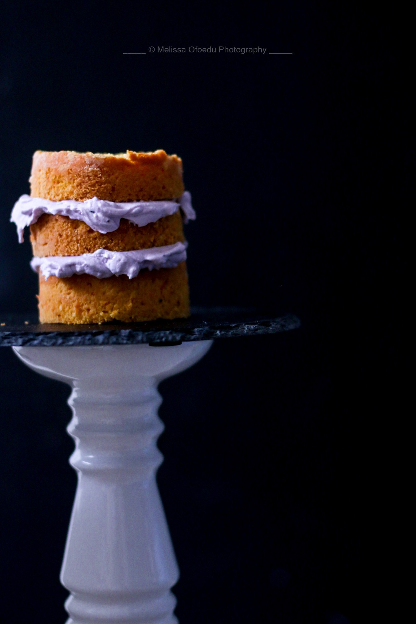 pumpkin-spice-cake-with-blackberrycream-melissa-ofoedu-photography-6-von-1